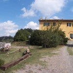 Agritourism close Pontedera